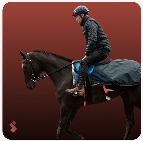 Real-time respiratory monitoring device for racehorses